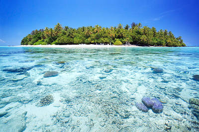 Coral Reef And Tropical Island In The Maldives Art Print by Matteo Colombo