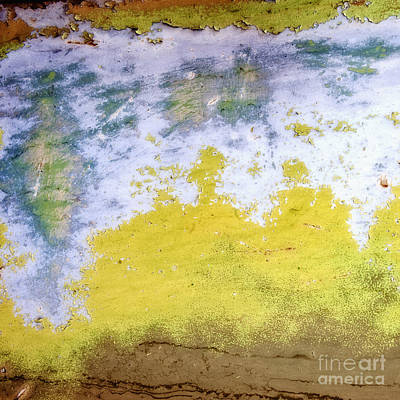 Photograph - Coral Reef In Abstract Square by Lee Craig
