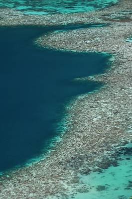 Coral Reef In Shallow Water Art Print