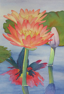 Painting - Coral Waterlilies by Judy Mercer