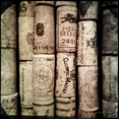 Photograph - Corked by Tim Nyberg