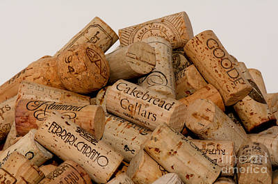 Photograph - Corks - 11 by Vinnie Oakes