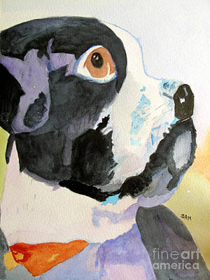 Painting - Corky by Sandy McIntire