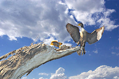 Cormorant Close Encounter With Tree Squirrel 1 Art Print by Roy Williams