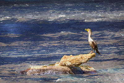 Painting - Cormorant Fishing On The French Broad River by John Haldane
