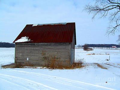 Moody Trees - Corn Barn by Tina M Wenger