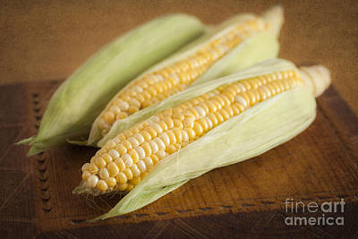 Photograph - Corn Cobs by Colin and Linda McKie