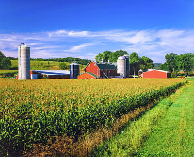 Photograph - Corn Crop And Iowa Farm At Harvest Time by Ron thomas