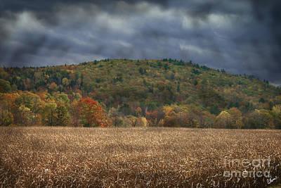 Fall Photograph - Corn Crops by Alana Ranney