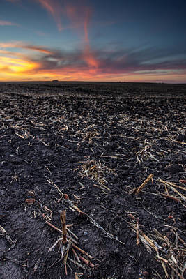 Cornfield Photograph - Corn Dusk by Aaron J Groen
