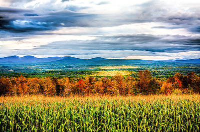 Photograph - Corn Field by Fred Larson