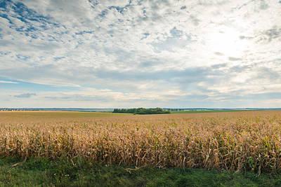 Wild Weather - Corn field by Nikita Buida