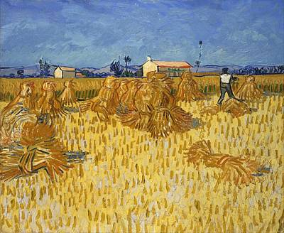 Netherlands Painting - Corn Harvest In Provence by Vincent van Gogh