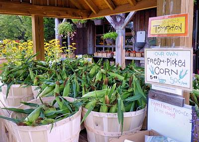 Farmstand Photograph - Corn by Janice Drew