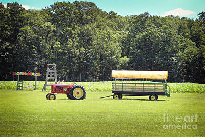Hay Ride Photograph - Corn Maze by Colleen Kammerer