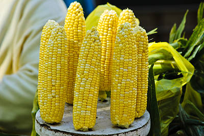 Photograph - Corn On Display by Christi Kraft