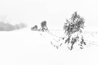 Photograph - Corn Shocks In A Winter Field - Bw by Chris Bordeleau