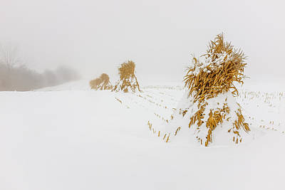Photograph - Corn Shocks In A Winter Field by Chris Bordeleau