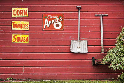 Whimsy Photograph - Corn. Tomatoes. Squash - Americana - Old Farm Signs by Gary Heller
