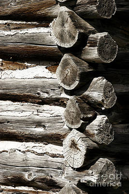 Photograph - Corner Logs by Lincoln Rogers