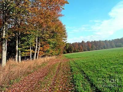 Corner Of The Field Original