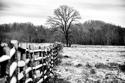 Gettysburg Address Photograph - Cornered In Gettysburg by John Rizzuto