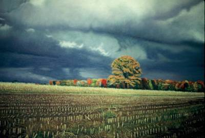 Cornfield On Argentine Road Art Print by James Welch