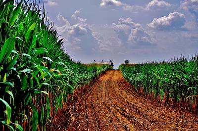 Cornfield Photograph - Cornfield Skies by Robert Geary