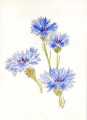 Painting - Cornflowers by Stephanie Grant