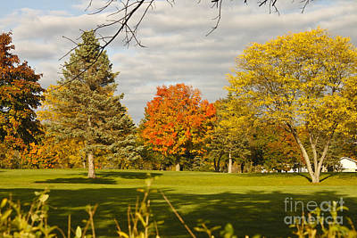 Corning Fall Foliage 5 Art Print