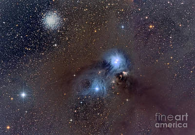 Blue Giant Star Photograph - Corona Australis, A Constellation by Roberto Colombari