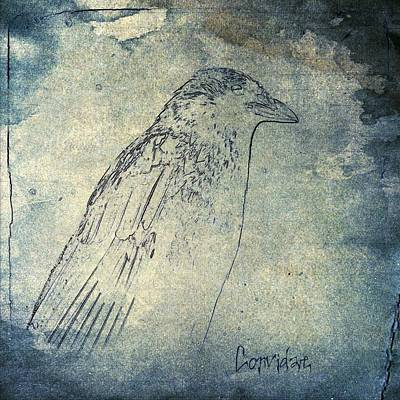 Grungy Mixed Media - Faded Corvidae by Gothicrow Images