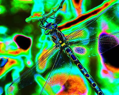 Photograph - Cosmic Dragonfly Art 1 by Ben Upham III