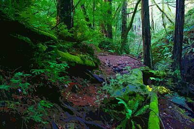 Photograph - Cosmic Redwood Forest Energy by Ben Upham III