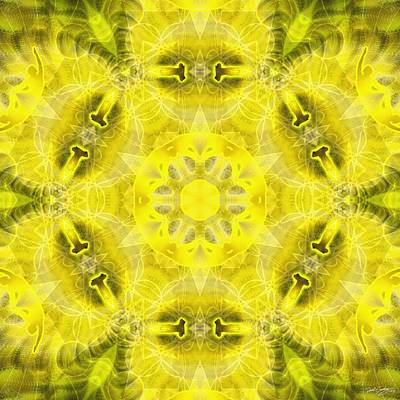 Digital Art - Cosmic Spiral Kaleidoscope 23 by Derek Gedney