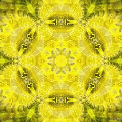 Digital Art - Cosmic Spiral Kaleidoscope 23 by Derek Gedney