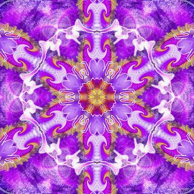 Digital Art - Cosmic Spiral Kaleidoscope 24 by Derek Gedney