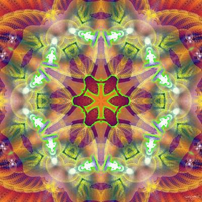 Digital Art - Cosmic Spiral Kaleidoscope 42 by Derek Gedney