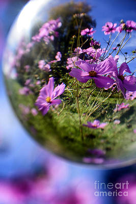 Cosmos In A Sphere Art Print