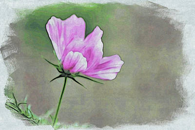 Cosmos Painting - Cosmos Interrupted by Bonnie Bruno