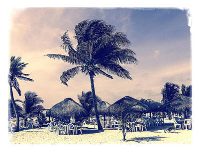 Photograph - Costa Maya Beach Day by Julie Palencia