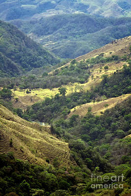 Photograph - Costa Rica Landscape by Carrie Cranwill