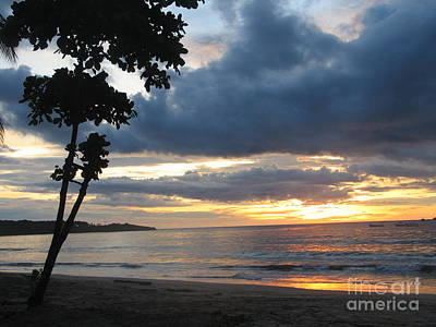 Art Print featuring the photograph Costa Rica Palm Sunset - Seascape by Shelia Kempf