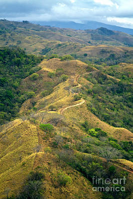 Photograph - Costa Rica Scenic Landscape by Carrie Cranwill