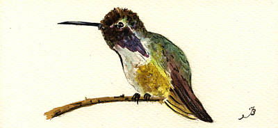 Costa S Hummingbird Art Print by Juan  Bosco