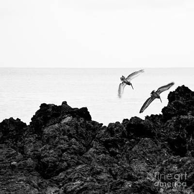 Photograph - Costarica-fineart-23 by Javier Ferrando