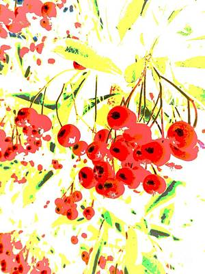 Art Print featuring the photograph Cotoneaster by Barbara Moignard