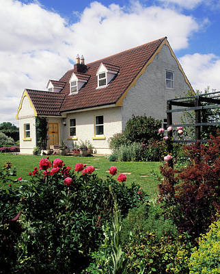 Garden Flowers Photograph - Cottage Garden, Near Ratoath,co Meath by Panoramic Images