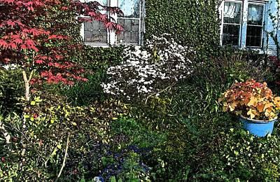 Cottage Garden Original