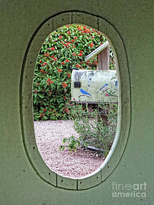 Photograph - Cottage Garden Window by Ella Kaye Dickey